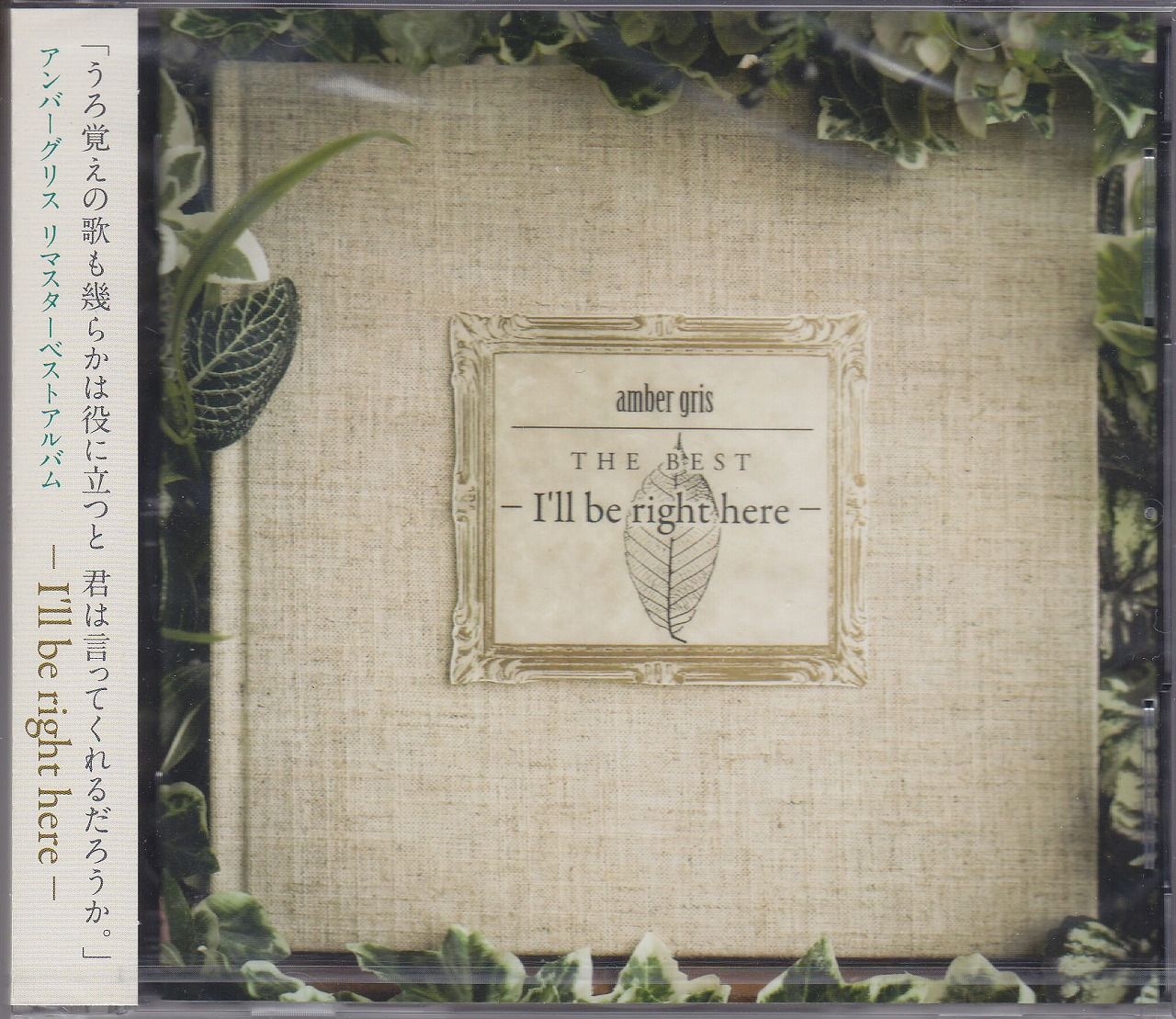 アンバーグリス の CD amber gris THE BEST - I'll be right here -