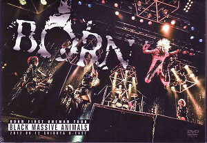 BORN ( ボーン )  の DVD BORN ONEMAN TOUR 2012『BLACK MASSIVE ANIMALS』